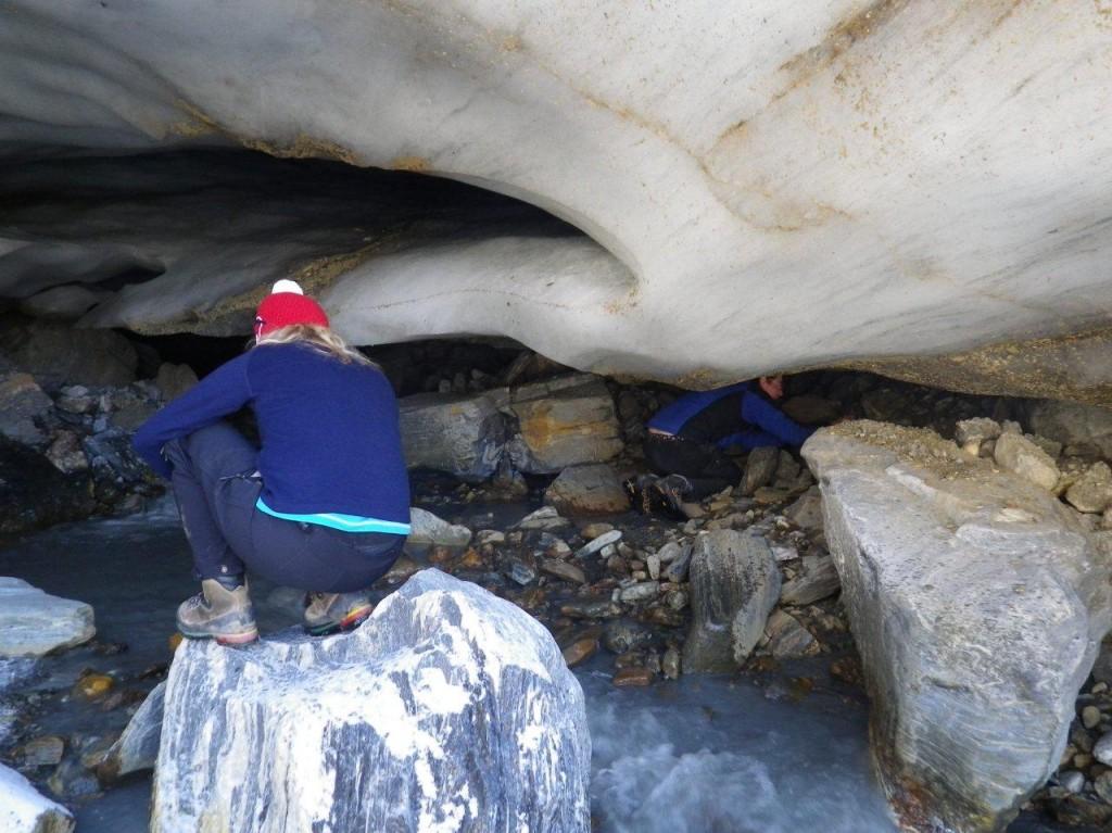 glacier ecosystems
