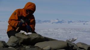 Cosmogenic nuclide sampling a boulder on a moraine
